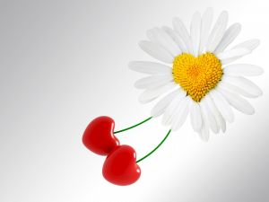 A heart-shaped daisy and two cherries