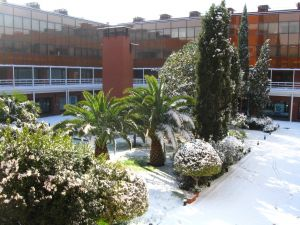 Snowfall in the Madrid Transport Centre