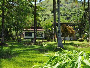 A place full of vegetation in Brazil