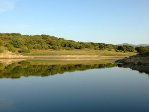 El Vellón Reservoir (Pedrezuela Reservoir), Guadalix, Madrid