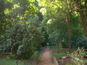 The Buenos Aires Botanical Garden (Argentina)