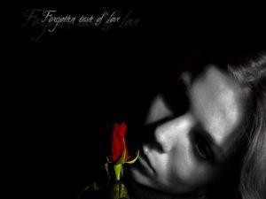 Forgotten taste of love