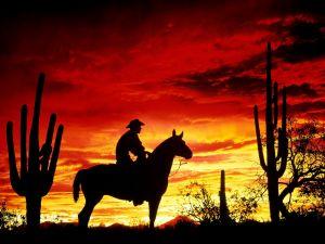Cowboy crossing the desert