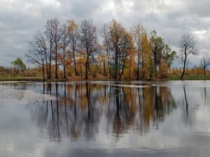 Autumnal landscape in front of a crystalline lake