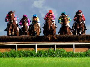 A steeplechase horse race