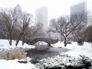 Central Park in winter, New York
