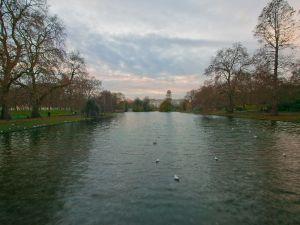 Buckingham Palace seen from St James' Park