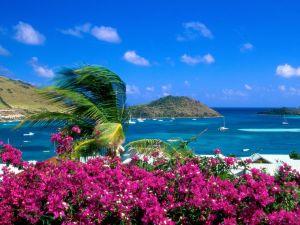 Landscape of coast full of color