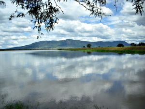 Lake in the town of La Barca (Jalisco, Mexico)