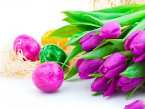 Easter eggs and tulips lilacs