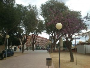 A street in Murcia, Spain