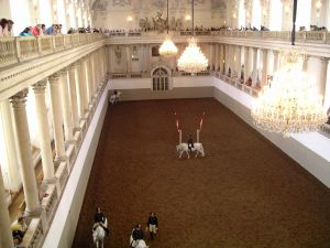Equestrian training in the Hofburg Palace (Vienna, Austria)