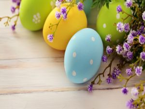 Easter eggs and little flowers