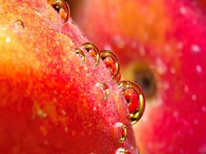 Drops on the skin of a fruit