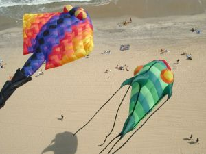 Kites with original shapes, on the beach