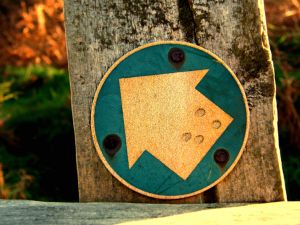 Signpost with an arrow
