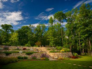 A beautiful green garden