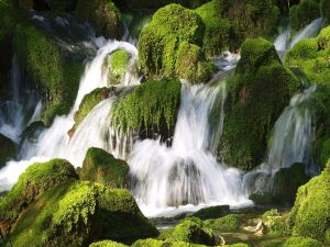 Small waterfalls between mossy rocks