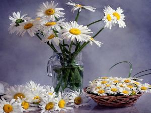Bouquets of daisies in a jar and a basket