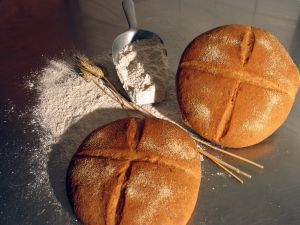 Wheat flour breads