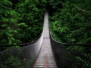Lynn Canyon Suspension Bridge, British Columbia