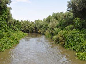 Danube Delta (Romania)