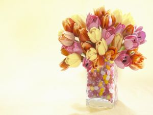Vase with tulips in various colors