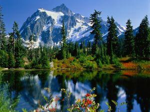 Lake near the mountains