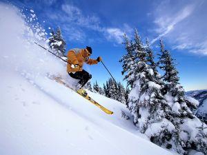 Going down the mountain on skis