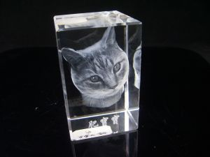 3D laser engraving of a head cat
