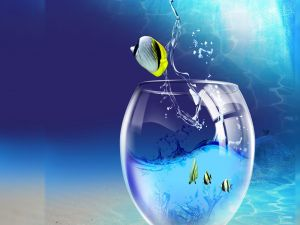 Fish jumping out of the fishbowl