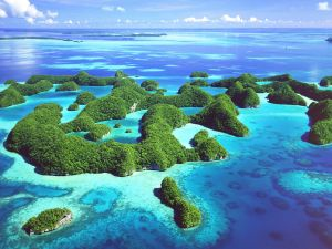 Islands covered of vegetation in Palau