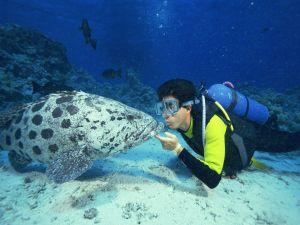 Kissing a fish
