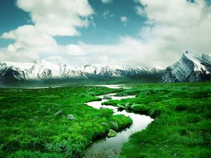 Landscape of green meadows and snowy mountains
