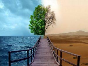 Sea and desert
