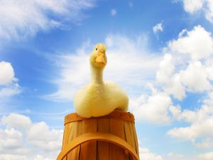 A yellow duck on a wooden barrel
