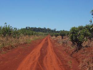 Road of Tierra Colorada, Misiones province, Argentina