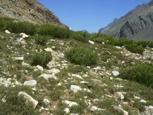Uspallata Pass (Mendoza, Argentina)