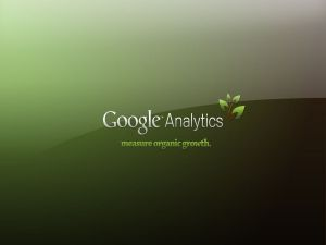 Google Analytics, the web traffic analysis system by Google