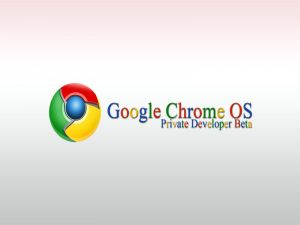 Google Chrome OS. Private Developer Beta