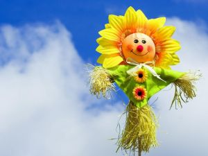 Scarecrow with flower shape