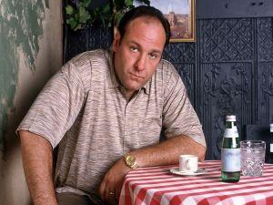 "James Gandolfini, the actor who plays Tony Soprano in ""The Sopranos"""