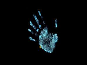 Hand fingerprint