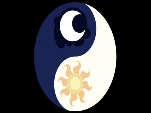 "The Taijitu, symbol representing the ""yin and yang"", with a sun and a moon inside"