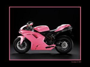 Pink Ducati