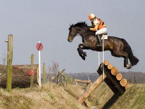 Horse and rider on an obstacle course