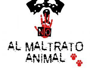 No to animal abuse