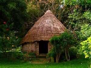 Indigenous housing