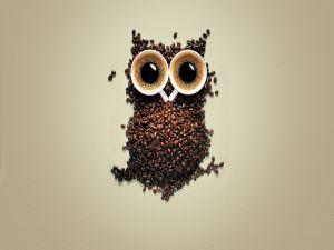 A coffee owl