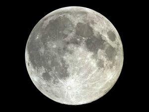 The Earth's moon